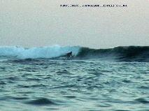 MANZANILLO OUTER REEF BREAK